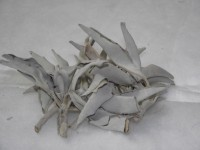 White Sage  (per 1/2 ounce) Loose California